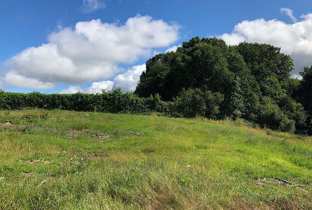 Terrains /  Commune de Boisseuil